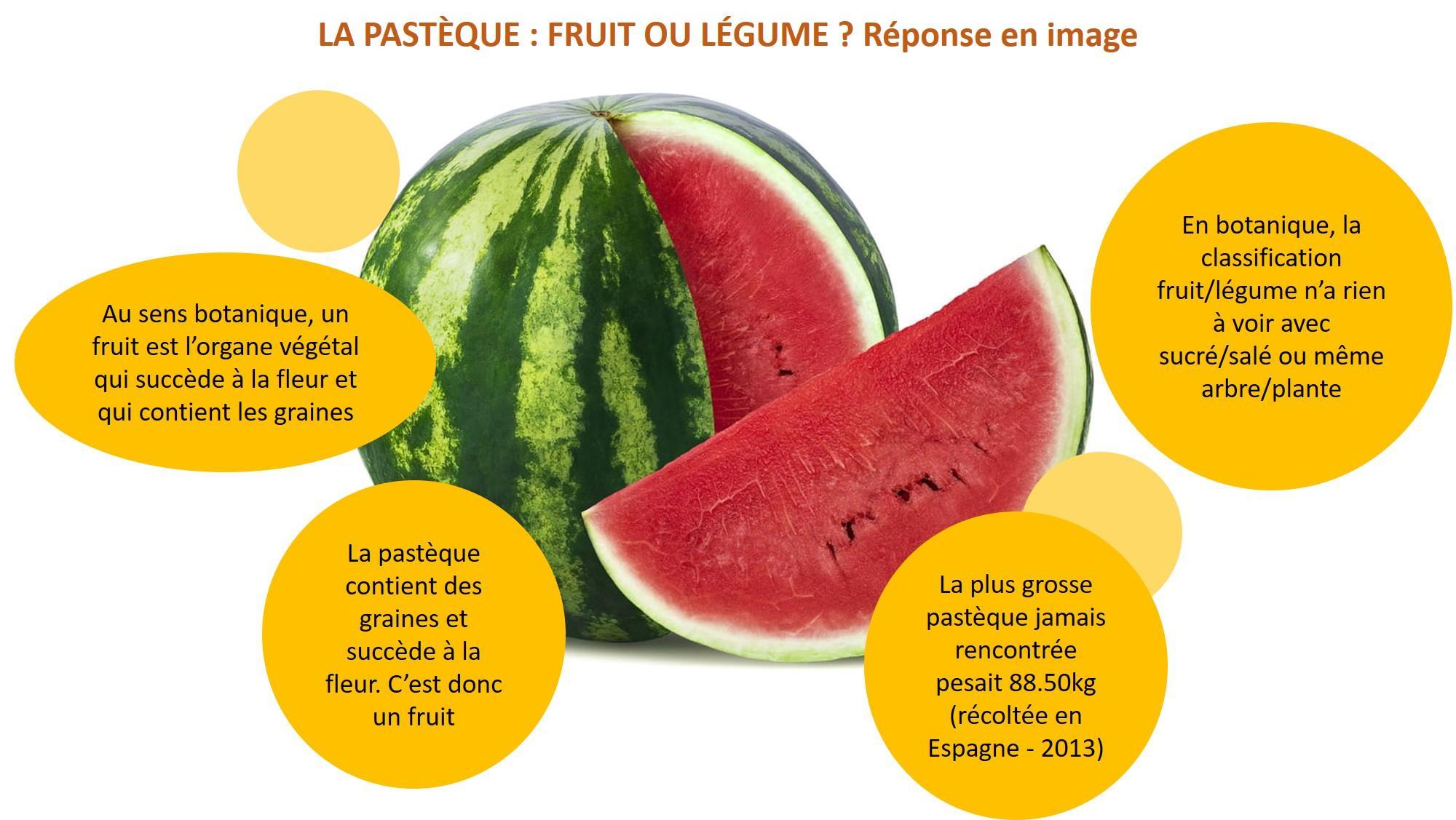 pastèque : fruit ou légume